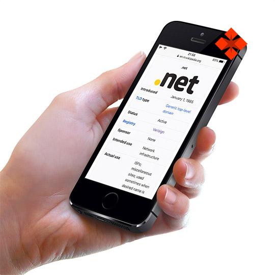 Dominio NET